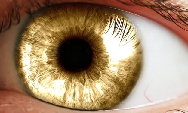 Through Skarlet's Eyes