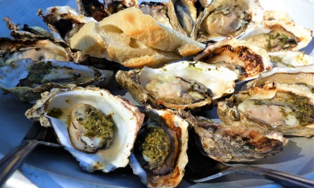 The Oysters of Hood Canal