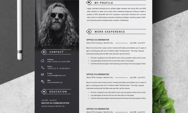Senior Creative Developer Resume