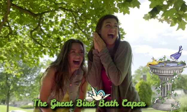 The Great Bird Bath Caper