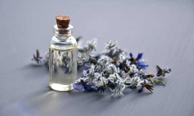 A Guide to Aqua, Citrus, and Fresh Perfumes
