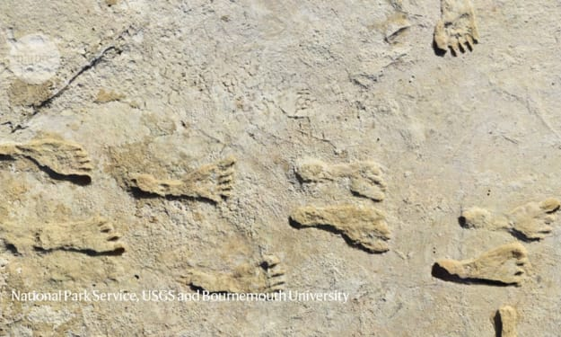 Oldest human footprints discovered in the Americas