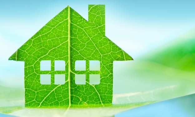 17 Easy Steps to Sustainable Living