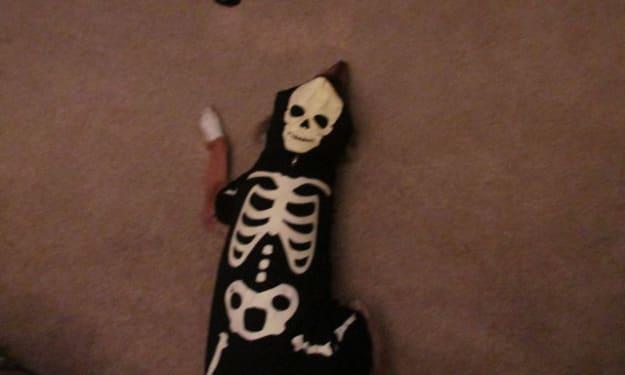 Furry Bones