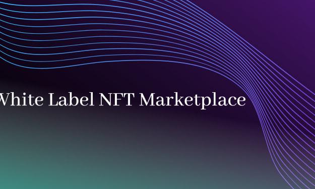 Launch your White Label NFT Marketplace