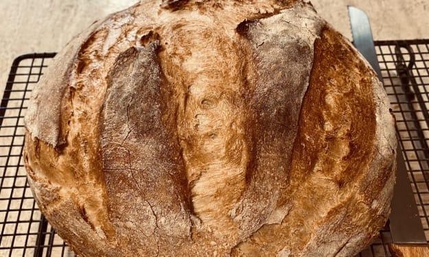 Baking Artisan Sicilian Bread