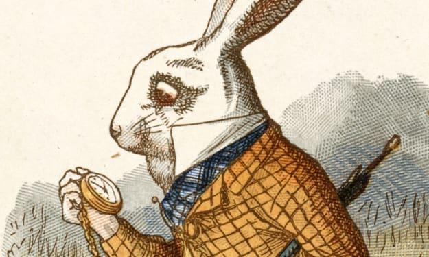 Old White Rabbit