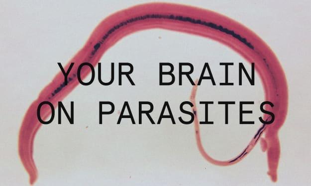 Your Brain On Parasites