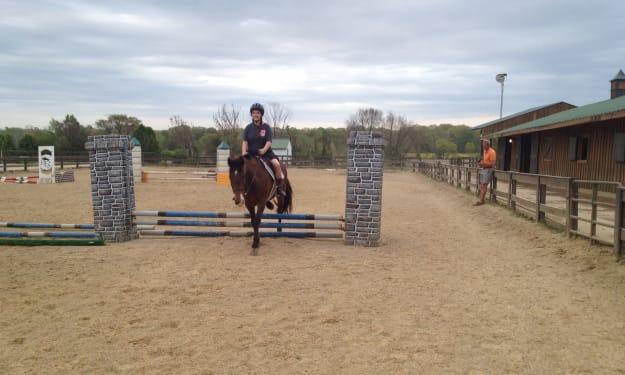 My First School Horse