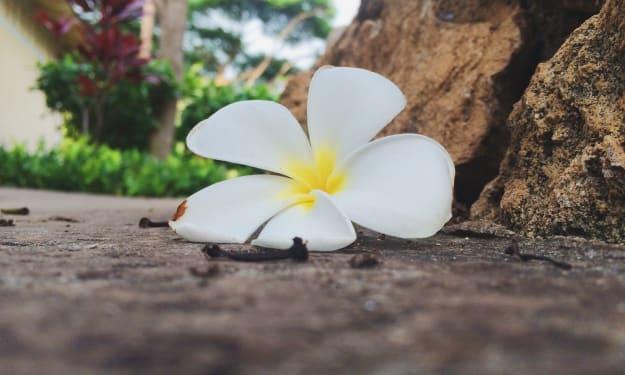 5 Ways to Practice Self-Love