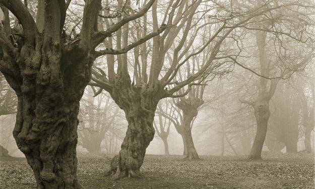 Paranormal Hotspots You Can Legally Visit