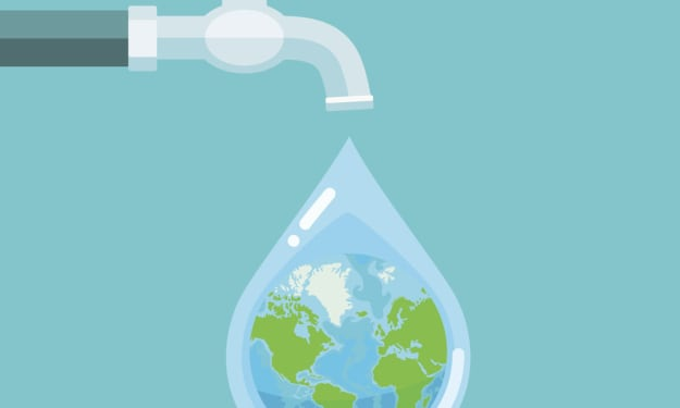 Proven Ways to Save Water in Your Garden