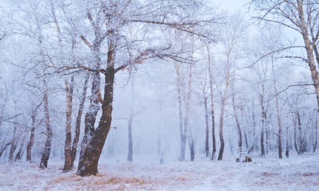 Winter for a Poet