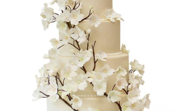 The Wedding Cake Debacle