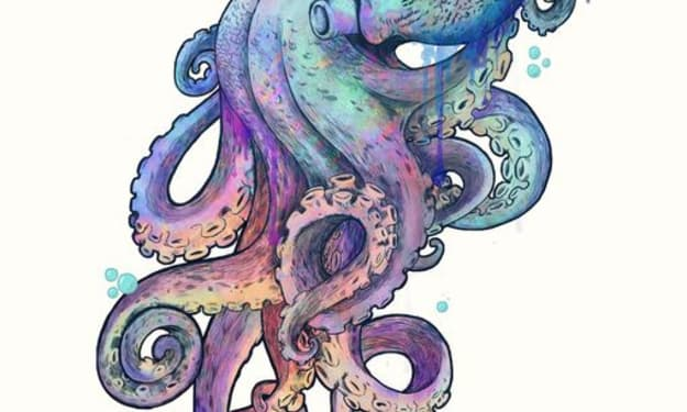 The Octopus of My Heart