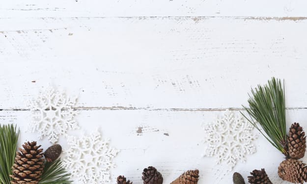 How to Host a Winter-Themed Party Martha Stewart Would Be Proud Of