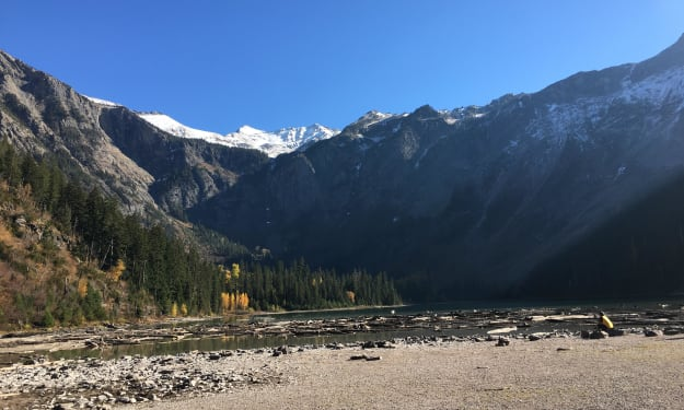 Glacier National Park/Avalanche Lake: I Went for a Little Stroll in the Woods Yesterday