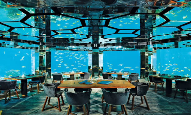 5 Unique Restaurants that People Travel Half the World to Dine In