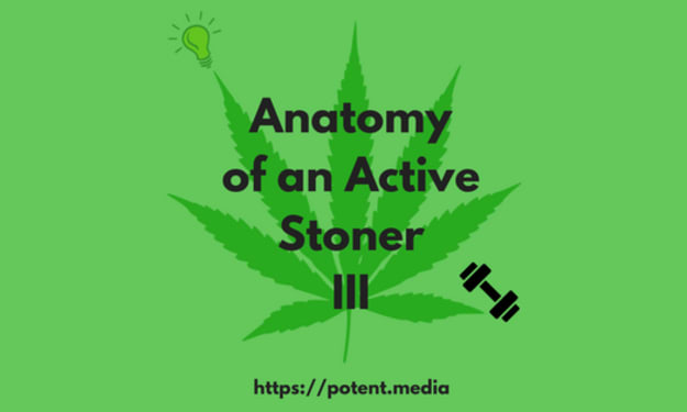 Anatomy of an Active Stoner 3: The Charity Banquet