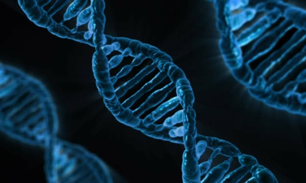 DNA Testing—8 Things You Should Know