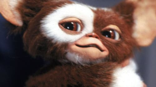 'Gremlins': One of the Greatest Films of the 80s!