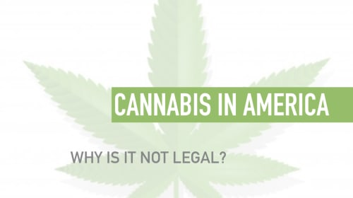 Cannabis in America