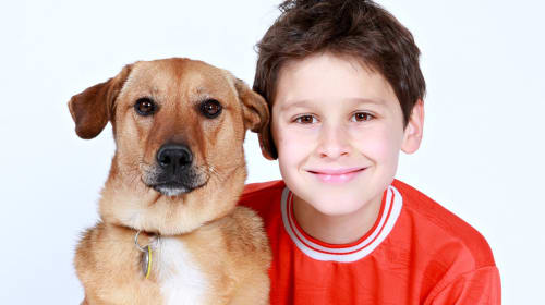 What to Do When Your Child's Pet Dies