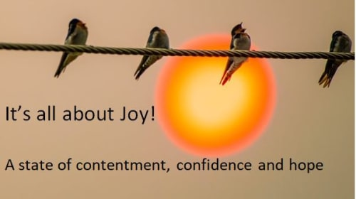 It's All About Joy!