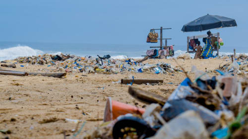 The Bigger Picture Behind Marine Pollution