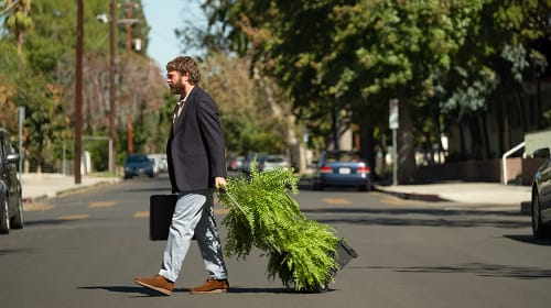 My Review of 'Between Two Ferns: The Movie'