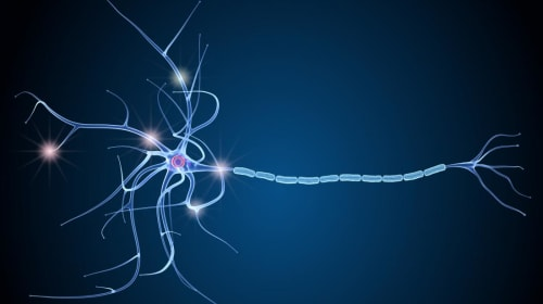 Know More About Multiple Sclerosis: A Serious Brain Disorder