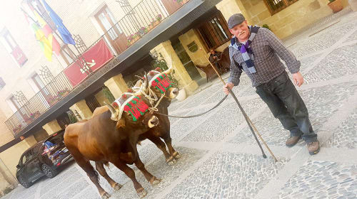Camino de Santiago, Days 6-10—From Estella to Belorado