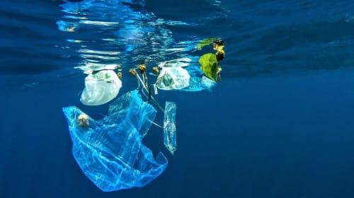 How to Decrease Single Plastic Use