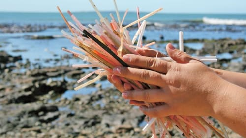 Why We Should Unite in Sensitizing People Against the Unnecessary Use of Plastic Straws