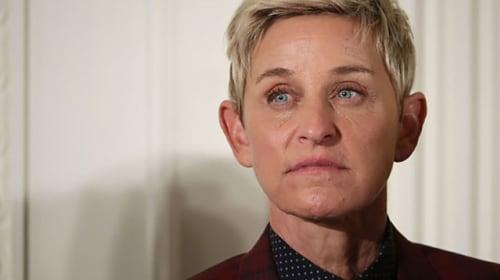 Okay Ellen, Stop