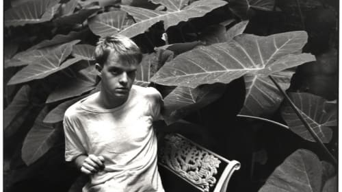 Truman Capote: The 5 Best Works