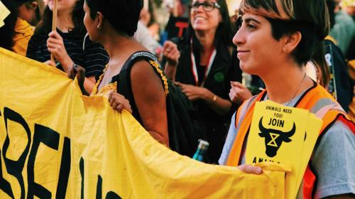 Reaction To: Extinction Rebellion Tube Protests