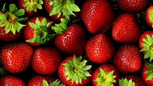 Stop Throwing Away Strawberry Leaves