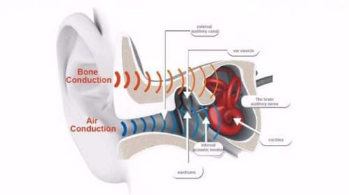 How Does Bone Conduction Work