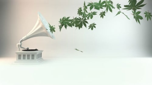 How Is Music Going to Change With More People Consuming Cannabis?