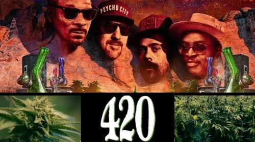 The 5 Best Rated Marijuana Documentaries