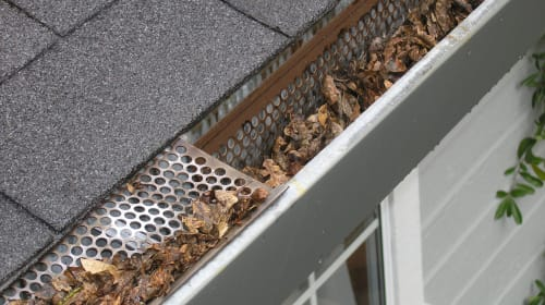 Best Prevention Guide to Keep Away Gutter Clogs