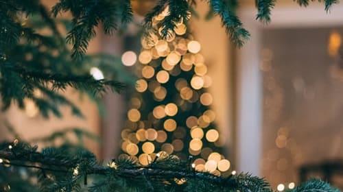 Four Great Last Minute Christmas Activity Ideas