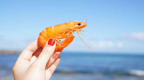 6 Tips for Adding More Seafood to Your Menu