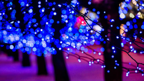 To All Those Who Keep their Christmas Lights Up Through The Winter…Thank You.