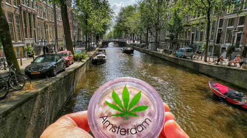 Cannabis Culture in Amsterdam
