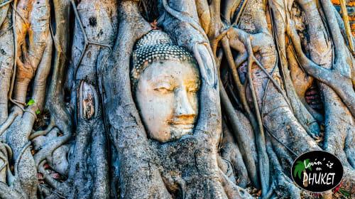 The Historic Ruins of Ayutthaya