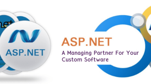 Asp.net: A Managing Partner For Your Custom Software