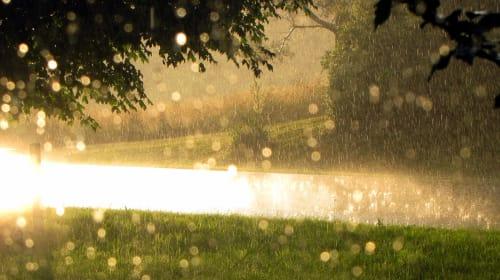 The Power of Rain