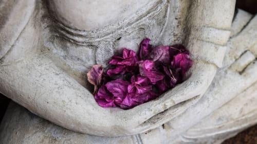 10 Day Vipassana Meditation Course